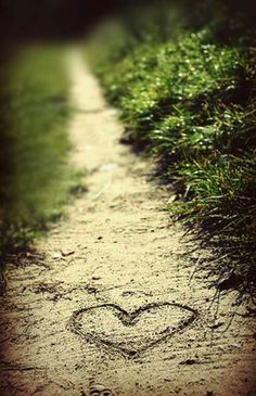 Finding love is an adventure but will never be found unless you go down a new path.