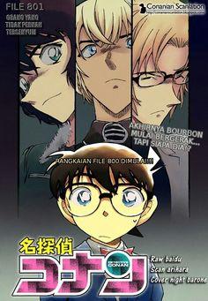 Detective Conan File 801