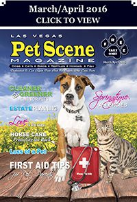 Las Vegas Pet Scene Magazine - March/April 2016 Inside This Issue: First Aid Tips For Pet Parents, Springtime Allergies, Cleaner & Greener Home For Pets, Estate Planning, Love Is The Cure, Horse Care – Protecting The Back, Loss Of A Pet… Plus Adoptable Pets, Coupons, Pet Events and Much More!