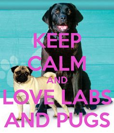 keep-calm-and-love-labs-and-pugs.png (600×700)