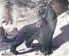 Night Elf Druid in feral form from World of Warcraft❄️ World Of Warcraft Druid, Warcraft Art, Fantasy Paintings, Fantasy Artwork, Elf Druid, Fantasy Beasts, Night Elf, Creature Concept Art, Wow Art