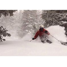Powder. Nothing better in winter.