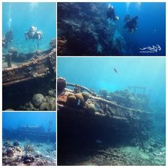 Fun diving at the tugboat at Curacao... #tauchen #fun #curacao #scuba #relaxedguideddives
