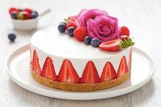 Per la base del cheesecake: polverizzate nel mixer i biscotti secchi, unite il burro fuso a temperatura ambiente e azionate di nuovo l'apparecchio il...