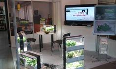 Stoisko firmy U-TEC Europe - tak po raz pierwszy prezentowaliśmy Green Farma publiczności! Hydroponika - nowa droga rozwoju współczesnego ogrodnictwa. #GreenFarm #ZdroweJedzenie #ZdroweWarzywa #UprawiajToSam #Hydroponika #Hydroponic #Sałata #Warzywa #IndoorGarden #GrowYourOwn #LifeStyle
