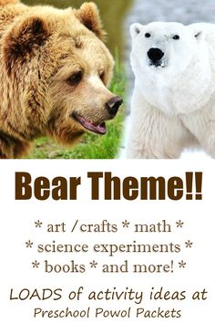 Fun science experiments and activities for a bear theme for preschoolers! Cute bear crafts, awesome bear science projects, STEM activities, and more! Bear Activities Preschool, Bear Theme Preschool, Preschool Lesson Plans, Stem Activities, Preschool Ideas, Nursery Activities, Free Preschool, Science For Toddlers, Science Experiments For Preschoolers
