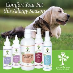 of your pets allergies they may have are attributed to the environment! Help support your pet this allergy season with pawTree healthe and wellness products. Pet Health, Health And Wellness, Pet Dogs, Dog Cat, Tick Spray, Pet Allergies, Seasonal Allergies, Animal Nutrition, Pet Nutrition