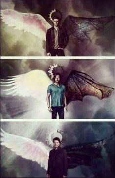 Wings Sam Dean Cas demon Angel