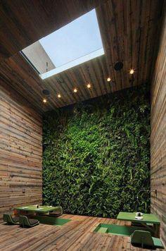Vertical indoor garden with window in the ceiling. Suitable for the bathroom.