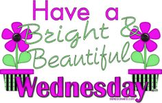 Hump Day pictures for fb Hump Day Pictures, Happy Wednesday Pictures, Wednesday Hump Day, Wednesday Greetings, Blessed Wednesday, Good Morning Wednesday, Wonderful Wednesday, Good Morning Good Night, Good Morning Quotes