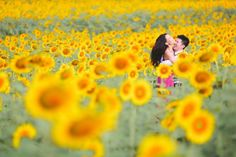 A sunflower field is a gorgeous setting for engagement photos! Photo by Aidan Dockery