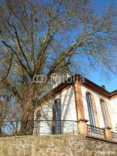 Alte Mauer aus Naturstein an der evangelischen Kirche mit neoklassizistischer Fassade in Wißmar