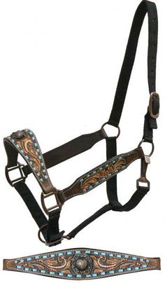 Dark Leather Belt Style Halter w Teal Buck Stitch Tooling New Horse Tack My Horse, Horse Tack, Horses, Leather Halter, Royal Palm Beach, Copper Paint, Horse Halters, Horse Accessories, Horse Supplies