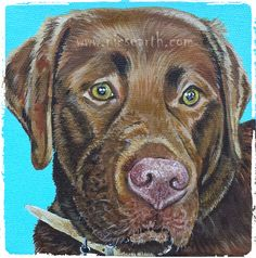Boris, a #petportrait #chocolate #labrador #dogs #doglovers #commissionedart #acrylic on box canvas 5x5 inches www.nicsearth.co.uk