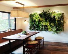 Vertikaler Garten in der Küche.Gepinnt von Gabi Wieczorek.