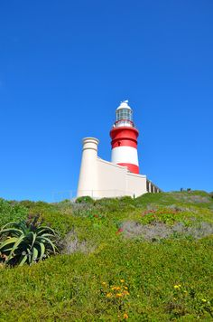 Cape Agulhas Lighthouse, Southernmost Tip of Africa Atlantic Ocean, Lighthouses, Cn Tower, Places Ive Been, South Africa, Cape, Country, Architecture, World