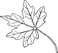 32 Best Fall Images Leaf Template Autumn Leaves Leaf