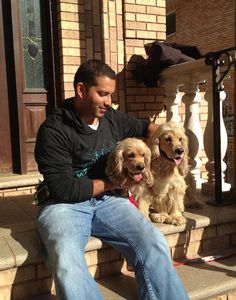 Jacob and Cooper urgently need a foster or adoptive home. They were found together in a park and are super friendly and deeply bonded. Please visit www.nyabandonedangels.com to complete an online application.  Please repin!!