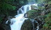 www.naturpark-oetscher.at Maps, Waterfall, Old Things, Outdoor, Tours, Vacation, Nature, Nice Asses, Outdoors