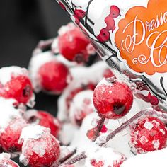 New fall/winter line teaser! Can't wait to get all the new stuff?! Get it here July 29th after its released https://amandalowe.po.sh! #winterberries #bfyhc #skin #lotion #allnatural #crueltyfree #poshmom #ohmyposh #perfectlyposh #new #launch #snow