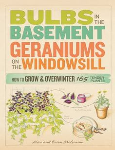 Bulbs in the Basement, Geraniums on the Windowsill is the first comprehensive resource on the care and maintenance of tender plants. In this zone-defying guide, you'll find simple techniques for overwintering, along with 160 detailed plant profiles that include individualized advice for overwintering and indoor care. With this practical guide, you can enjoy your favorite plants year after year, no matter where you live!