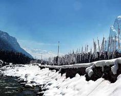 Yumthang in winter, sikkim, India