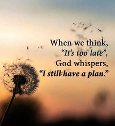 Peace Of God, Great Love, Still Have, Bible Quotes, Christianity, Let It Be, How To Plan, Plants, Inspirational