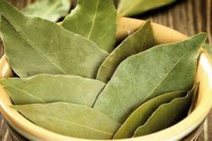 Properties bay leaf, which you did not guess! Bay Leaves, Plant Leaves, Laurus Nobilis, Diabetes, Diabetic Recipes For Dinner, Diet Recipes, Anorexia, Heartburn, Artichoke