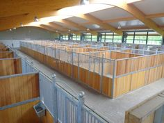 PAARDENBOXEN - Foto: 17 Dream Stables, Dream Barn, Horse Stables, Horse Farms, Horse Barn Designs, Horse Barn Plans, Farm Layout, Small Barns, Big Horses
