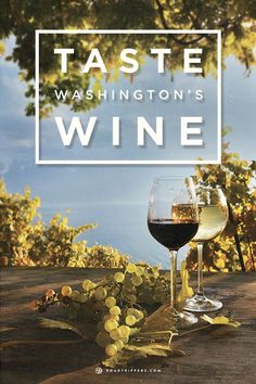 Take a tour of wineries in Washington State and taste their wine!