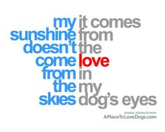 my sunshine doesn't come from the skies; it comes from the love in my dog's eyes