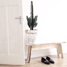 N E W I N | Deze prachtige cactus kreeg ik cadeau - nog voor mijn verjaardag - van mijn schoonvader  #interior #interiør #instahome #interieur #industrial #inspiration #interior123 #interior4all #inspointerior #interiordecor #interiorwarrior #inredninginspiration #home #house #homedecor #finahem #myview #mitthjem #ssevjen #simplicity #scandichome #scandinavian #showhometop5 #scandicliving #scandicinterior #nordic #nordichome #white #whiteliving