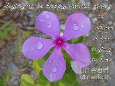 #Flower With #Raindrops #Poster with #inspirational #quote