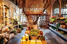 LA Shopping: The place to go for the best plants and fun planters year-round.