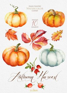 Pumpkin watercolor clipart Halloween Autumn Briar от ReachDreams