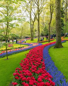Adventure World, Adventure Travel, Travel Around The World, Around The Worlds, Voyager Loin, Tulips Garden, Things To Do Alone, Destinations, Canada Day