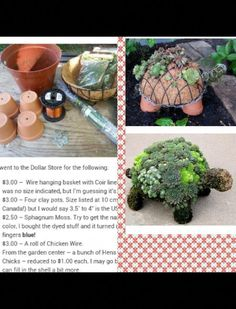 Food Merchandising Tips - List of the most beautiful garden Garden Yard Ideas, Garden Crafts, Garden Projects, Garden Pots, Planting Succulents, Planting Flowers, Pinterest Garden, Most Beautiful Gardens, Garden Inspiration