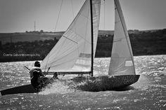 Star, Balaton, sailing