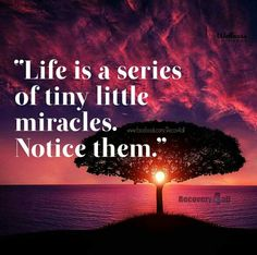 Tiny little miracles