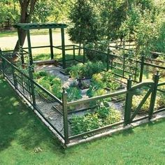 Small garden idea for a small yard.
