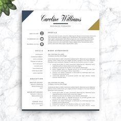 Resume Examples, Sample Academic Resume Academics