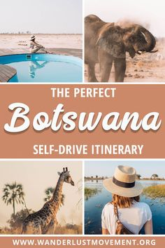 Botswana is one of the top safari destinations in Africa. But did you know the best way to explore the country is with a road trip? Here's a one-week Botswana itinerary that will take you to highlights like the Okavango Delta, the Kalahari, Chobe Natio Okavango Delta, Africa Destinations, Travel Destinations, Travel Diys, Travel Bag, Travel Trip, Florida Travel, Air Travel, Travel Packing