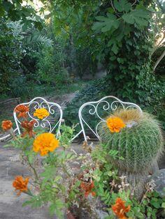 En nuestra mesa vintage French marigold o clavel de indias para escuchar el sonido de nuestra voz interior!! www.alifcosmetic.com