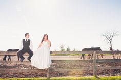 Weddings & Horses