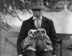 Owl twins with their boy.