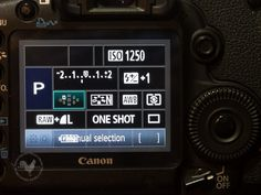 Just starting out with digital camera? Make sure your camera focuses where you want with this easy setting change.