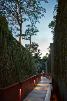 Immersed in the scent of tropical flowers and sounds of nature, amid the mist lifting from the white water breaks of the Ayung River, Four Seasons Resort Bali at Sayan eclipses Ubud's many other five star resorts on the scale of theatrical experience. #balihotelsluxury #bestbalihotels #ubudbalihotelluxury #ubudluxuryresort #ubudluxuryhotel Luxury Hotels Bali, Ubud Bali Hotels, Beach Hotels, Hotels And Resorts, Best Of Bali, Best B, Tropical Flowers, Hotel Reviews, Four Seasons