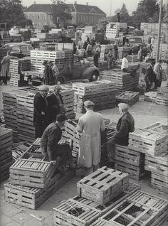 Kees Scherer   Chicken market , Barneveld/Holland 1952-1957