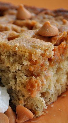 Amish Butterscotch Cake ~ A very moist, bursting-with-butterscotch cake.