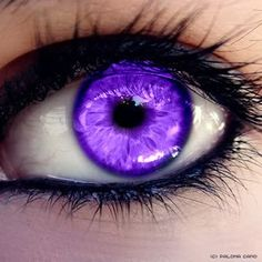 If you're looking for an everyday look that is really original, violet eyes are the way to go. SO unique, barely anyone has purple eyes. Gorgeous Eyes, Pretty Eyes, Cool Eyes, Colored Eye Contacts, Purple Contacts, Purple Eyeliner, Yennefer Of Vengerberg, Purple Fire, Human Eye